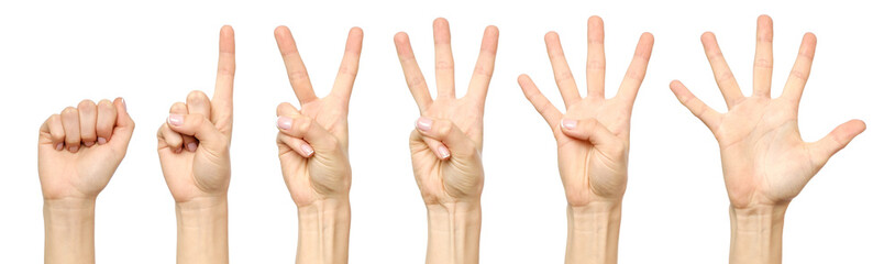 Set of counting female hand sign isolated
