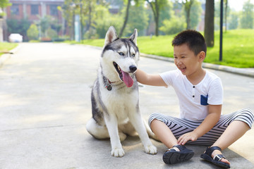 lovely little boy playing with his husky dog outdoor
