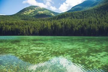 Adolphus lake mount robson