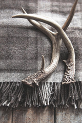 Deer antlers laying on wool plaid blanket