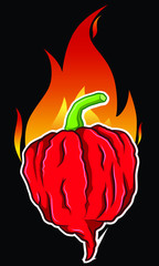 Carolina Reaper Hot Chili