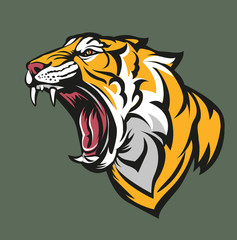 Vector illustration, tiger head symbol