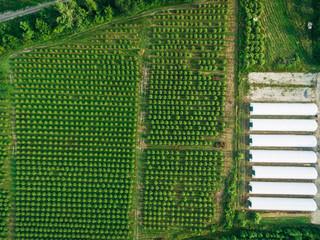 Overhead drone image of a farm