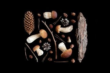 Cones, forest mushrooms, bark, needles. Pattern. Black background.
