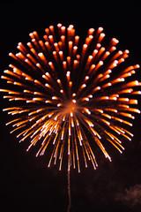 details of fireworks en the sky
