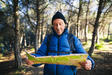 Hiker senior man searching in the map his position in the forest.