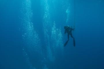 A scuba diver heads toward the surface after a dive.