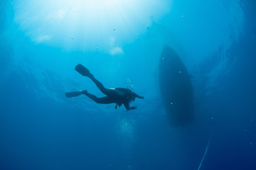 A scuba diver heads toward the surface after a dive.