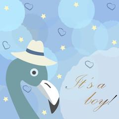 Baby Boy Birth announcement. Cute Bird announces the arrival of a boy