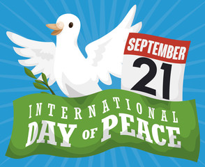 Dove, Olive Branch, Calendar and Ribbon for Day of Peace, Vector Illustration