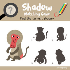 Shadow matching game of Sitting Baboon animals for preschool kids activity worksheet colorful version. Vector Illustration.