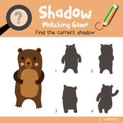 Shadow matching game of Standing Bear animals for preschool kids activity worksheet colorful version. Vector Illustration.