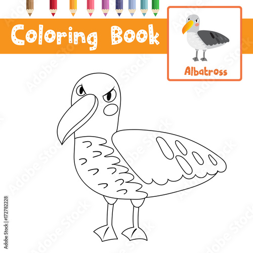 Coloring Page Of Albatross Animals For Preschool Kids Activity Educational Worksheet Vector Illustration