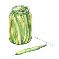 Watercolor drawing. Bank with beans, peas in a pod. Illustration on white isolated background.