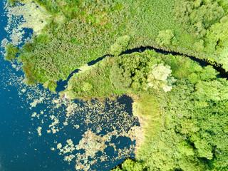 Mündung des Aubachs in den Medeweger See