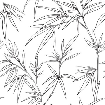Seamless pattern with bamboo in Japanese style. Outline drawing