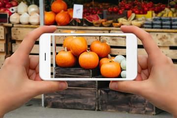 Woman take photo of pumpkins on a farm market by phone