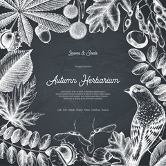 Vintage card design with bird on chalkboard. Hand drawn leaves and seeds illustration. Vector autumn template. Wedding invitation.