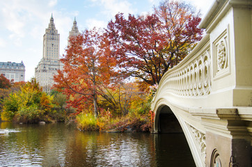 Aluminium Prints New York Autumn in Central Park in the city of New York, USA