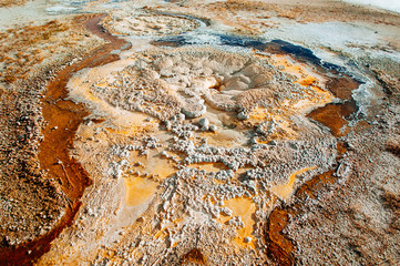 Geyser or hot spring in Yellowstone National Park