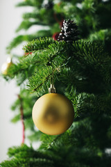 Detail of ornament on Christmas tree.