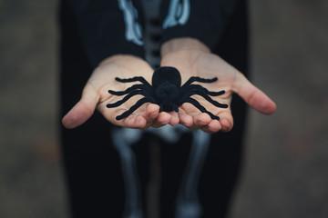 Children's hands holding a big black spider