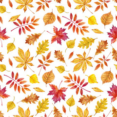 Watercolor autumn leaves pattern