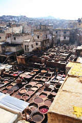 The tannery in Fes, Morocco