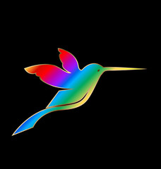 Hummingbird on a black background vector design
