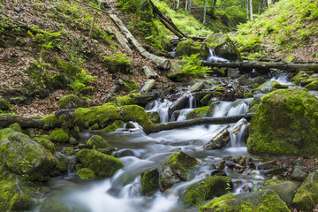 Fast mountain river flowing among mossy stones