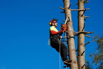 Klettergurt Baum : Bilder und videos suchen baumklettern