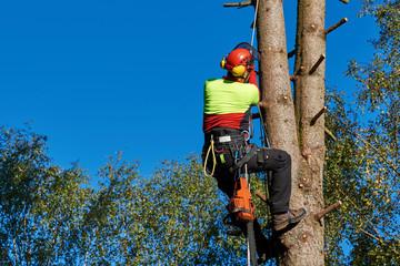 Klettergurt Für Baumpflege : Bilder und videos suchen: klettergurt