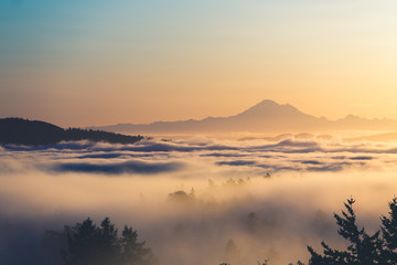 Mount Baker above a layer of fog