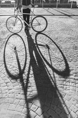 Shadow of a Bicycle on a Cobblestone Road