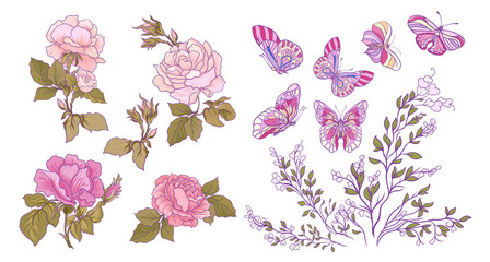 Rose, butterfly and branch set. Stock vector illustration.
