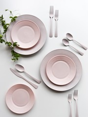 Pink plate and green leaf