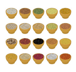 Groats in wooden bowl set. Rice and lentils. Red beans and peas. Corn and barley gritz. Millet and cuscus. Oat and buckwheat. Bulgur and wheat. Grain on white background. Vector illustration