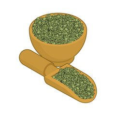 Green Lentils in wooden bowl and spoon. Groats in wood dish and shovel. Grain on white background. Vector illustration