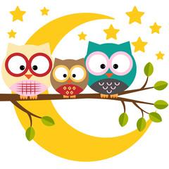 Canvas Prints Owls cartoon Three owls on a branch on a night moon sky background