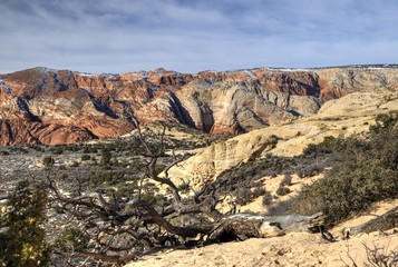 Snow Canyon Shows a Multitude of Colors