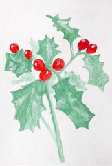 Painted christmas holly on textured paper,