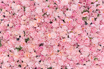 Foto op Canvas Bloemen Beautiful Pink flowers background