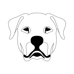 Argentine dog face  vector illustration  line drawing