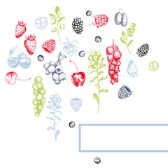 Vector background with  berries.
