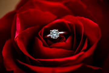 Close up of a wedding ring tucked into a single rose.