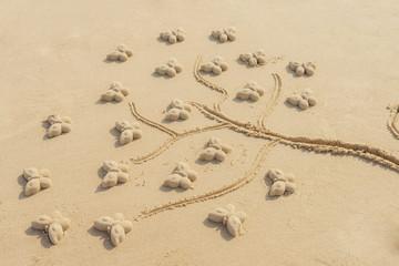 arbre à papillon dans le sable