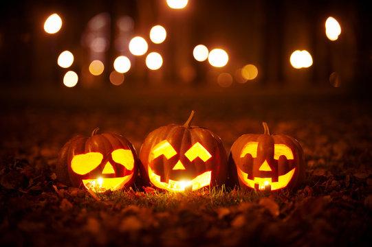 Three Kind Halloween Pumpkins in the park