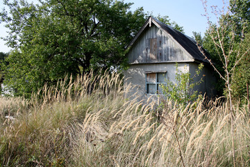 Abandoned old house in the field