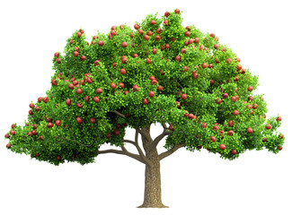 red apple tree isolated 3D illustration Wall mural