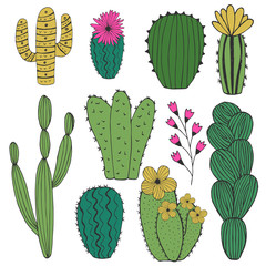 Collection of cute cacti